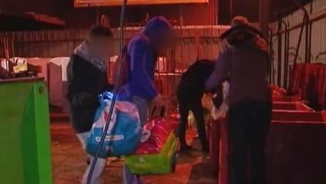 VIDEO. Zoom sur le gaspillage alimentaire dans les supermarchés - Francetv info   JLGrego   Scoop.it