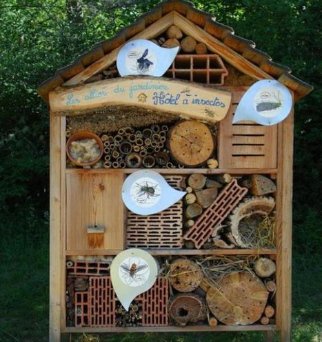 Des hôtels à insectes à Roanne | Mes passions natures | Scoop.it