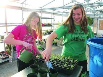 Students 'Go Green' With Indoor Garden Project - News, Sports, Jobs - The Intelligencer / Wheeling News-Register | Connected Teens | Scoop.it