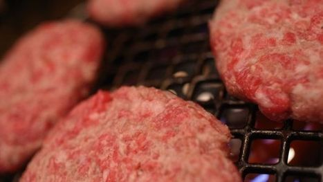 Can we produce meat products on a 3D printer? | 3D Printing and Fabbing | Scoop.it