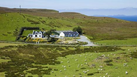 L'Ecosse interdit la culture des OGM sur son territoire - Economie - RFI | Scottish Independence - The Quiet Revolution | Scoop.it