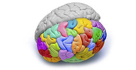 7 Signs You Have a Creative Brain | On Leaders and Managers | Scoop.it
