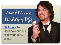 Michigan Wedding DJ, Photography & Videography | Chicago photographers | Scoop.it
