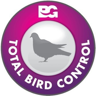 Health and Safety Implications for Businesses – Bird Control | Home Improvment, Business | Scoop.it