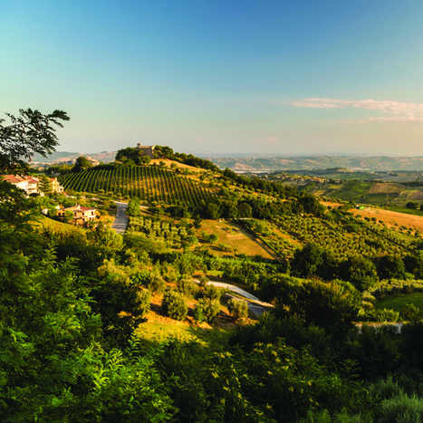 Homes in Le Marche | Le Marche Properties and Accommodation | Scoop.it