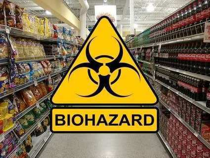 Decade-Long Feeding Study Reveals Significant Health Hazards of Genetically Engineered Foods ~ RiseEarth | GMOs | Scoop.it