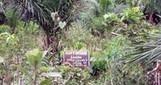 Foncier rural: Le Bénin au cœur de l'accaparement des terres | Questions de développement ... | Scoop.it