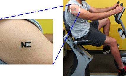 Tattoo biosensor warns when athletes are about to 'hit the wall'   Medical Engineering = MEDINEERING   Scoop.it