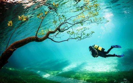 A magical diving landscape, Green Lake (Grüner See) in Austria | Language travel at its best | Scoop.it