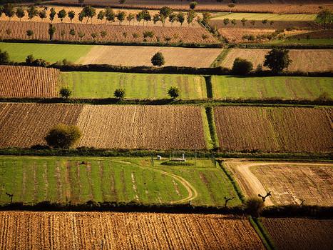 Bioresistenze: agricoltura che costruisce comunità - ConMagazine.it | Anthropologie | Scoop.it