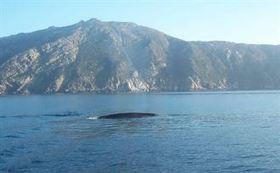 Veliero li studia nel nord Sardegna - L'Unione Sarda   Cagliari holidays   Scoop.it