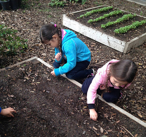Seeds of Change: The Value of School Gardens in Education and Community Health | Christine Tran | KCET.org | Educational Leadership and Technology | Scoop.it