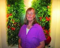 ¿Preguntas sobre producción en invernadero? La experta responde | Hortalizas | CALS in the News | Scoop.it