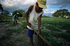 Strengthening Ownership and Effectiveness of Climate Finance | Climate Change Adaptation in Southeast Asia | Scoop.it