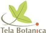 Sauvages de ma rue : retour sur l'année 2014 - Tela Botanica | biodiversité en milieu urbain | Scoop.it