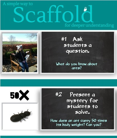 Scaffold Like an Ant- A simple scaffolding example | Teacher Gary | Scoop.it