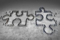 Dans le management, place à la stratégie collective, aux métiers et à l'autonomie | Intelligence collective | Scoop.it