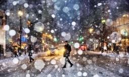 Prospect of warmer winters does not mean fewer deaths, study finds | GarryRogers NatCon News | Scoop.it