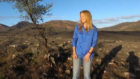 Western quolls finally return to the Flinders Ranges | GarryRogers Biosphere News | Scoop.it