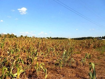Water Shortages Pose Greatest Threat to US Economic Growth | Economics | Scoop.it
