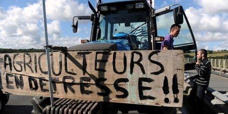 Les agriculteurs en crise préparent une action coup de poing à Paris jeudi   Agriculture en Dordogne   Scoop.it