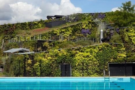 Dutch Aquatic Center Pushes Green Wall Envelope | EarthTechling | Vertical Farm - Food Factory | Scoop.it