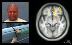 Health News - Psychopaths are not neurally equipped to have concern for others   Social Neuroscience Advances   Scoop.it