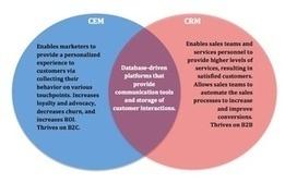 CEM vs CRM: Which Platform Is Better? | Content Marketing, Inbound Marketing & SEO (English) | Scoop.it