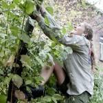 'Ik wil niet leven in een wereld waar een twaalfjarige niet in een boom mag klimmen' | Gemeentelijke Administratieve Sancties | Scoop.it