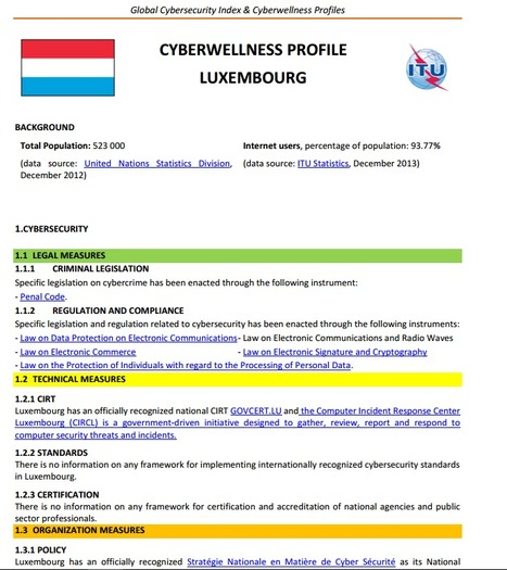 CYBERWELLNESS PROFIL LUXEMBOURG | CyberSecurity | Luxembourg (Europe) | Scoop.it