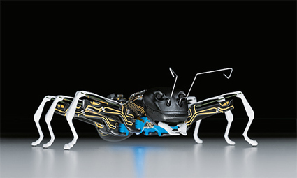 Festo has BionicANTs communicating by the rules for tasks | bioniQ | Scoop.it