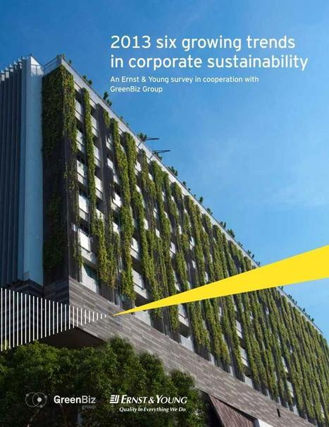 6 Latest Trends in Corporate Sustainability - Triple Pundit: People, Planet, Profit   Environment & Ecology   Scoop.it