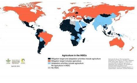 Majority of climate change pledges to the UN include climate change adaptation and mitigation in agriculture - CCAFS-CGIAR | Terre et Eau en région Méditerranéenne | Scoop.it