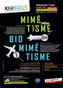 Kiosque-actus CNRS/Muséum - Journée sciences Mimétisme et Biomimétisme - rendez-vous le dimanche 7 juin | Actualité des laboratoires du CNRS en Midi-Pyrénées | Scoop.it