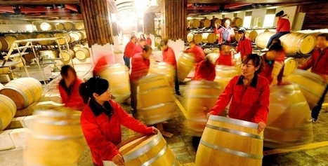 The future of wine in China | Zhongguo Wine | Winemagination | Scoop.it