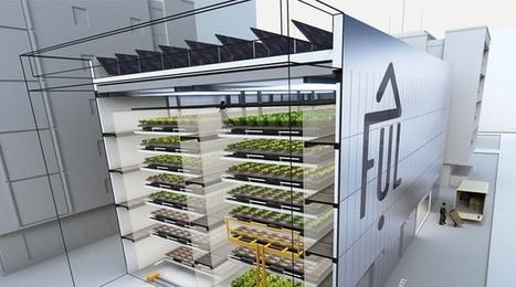 VIDEO. Villeurbanne: La première ferme urbaine s'offre une vitrine sur le campus de la Doua - 20 minutes | Innovations sociales | Scoop.it