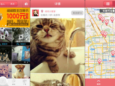 SmellMe: a Chinese social network for pets - CNET | Corporate Finance for Innovative Companies | Scoop.it