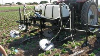 Lucky 7 key to alfalfa success, human existence   Western Farm Press   CALS in the News   Scoop.it