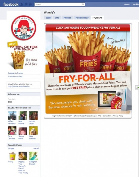 Wendy's Fry-For-All | Marketing in Motion | Scoop.it