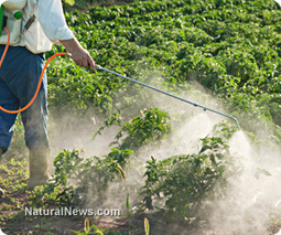 Failure of GMO crop technologies leads to huge increase in ... | GMO GM Articles Research Links | Scoop.it