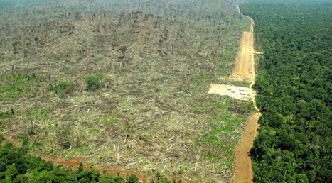 Deforestation Adds More Atmospheric CO2 than the Sum Total of ... | Biomes | Scoop.it
