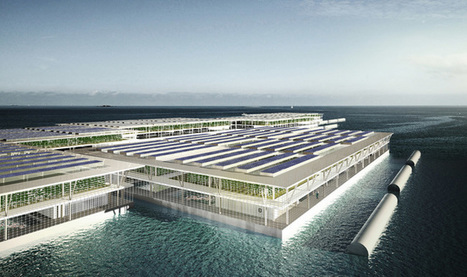 Revolutionary Floating Solar Farm Can Produce 8 Tons Of Vegetables Per Year | Vertical Farm - Food Factory | Scoop.it