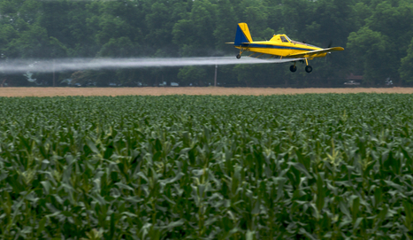 """Tell USDA and President Obama to Stop Dow Chemical's """"Agent Orange"""" Crops   GarryRogers Biosphere News   Scoop.it"""
