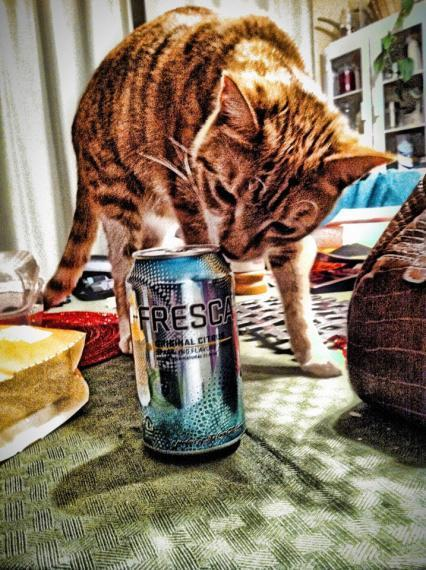 """Search for Fresca - Made by The Coca-Cola Company, """"It's Not Vodka."""" 
