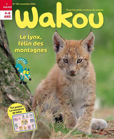WAKOU n°332 : Le lynx, félin des montagnes | Les revues de la médiathèque | Scoop.it