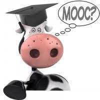 Taking a look at MOOCs