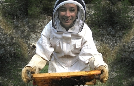 INRA - Claudia Dussaubat | Abeilles, intoxications et informations | Scoop.it