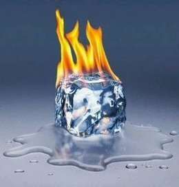 Calor infernal de 43º C, mata 100 mil frangos - Fim do Mundo em 2012   21 de dezembro de 2012   Scoop.it