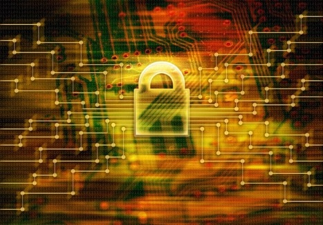 Miles Technologies: Dell Security Survey Reveals US Businesses Overlook IT Security | Business Technologies | Scoop.it