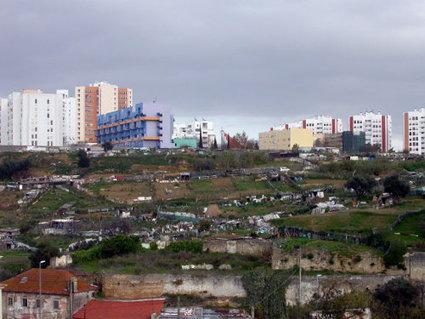 Quand l'agriculture s'installe en ville… - Métropolitiques | biodiversité en milieu urbain | Scoop.it